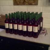 La cata de los vinos de Mas Comtal en el DOoriginal