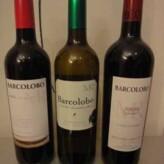 Próximamente cata de Bodegas Barcolobo en Nos Gusta el Vino