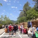 Gran éxito de la 4a Fira de Vins de Torrelles (Fotos)