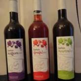 Próximamente cata de Can Sais en Nos Gusta el Vino