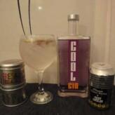 Especial Gin Tonics: Cool Gin