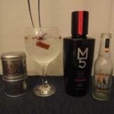 Especial Gin Tonics: Gin M5