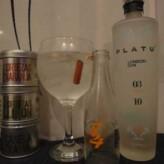 Especial Gin Tonics: Platu Gin