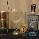 Especial Gin Tonics: Gin Ever