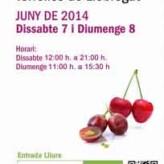 5ª Fira de Vins de Torrelles del Llobregat (7 y 8 de junio de 2014)