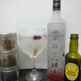 Especial Gin Tonics: Santamanía Gin
