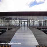 Guía de Enoturismo: Bodegas Baigorri (Samaniego, País Vasco)