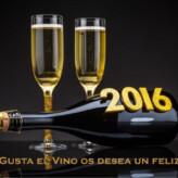 ¡Nos Gusta el Vino os desea un Feliz Año 2016!