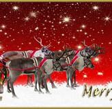 ¡¡Nos Gusta el Vino os desea una Feliz Navidad y unas felices fiestas!!