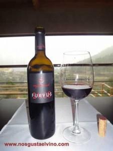 furvus2008