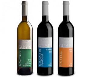 vins-guspi