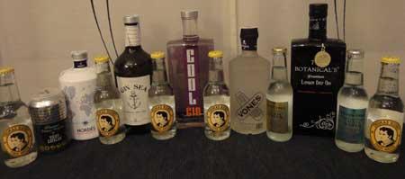 gin_tonics
