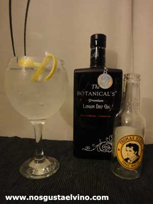 the botanicals gin perfect serve