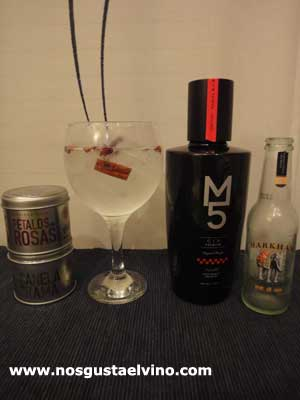 Gin M5 perfect serve