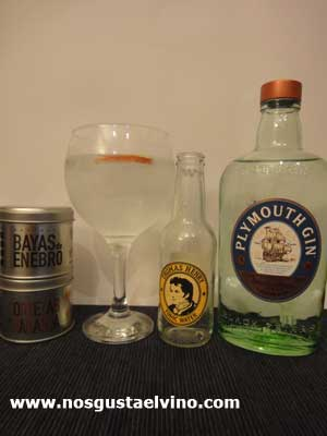 Plymouth Gin perfect serve