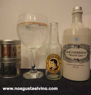 macaronesian gin perfect serve