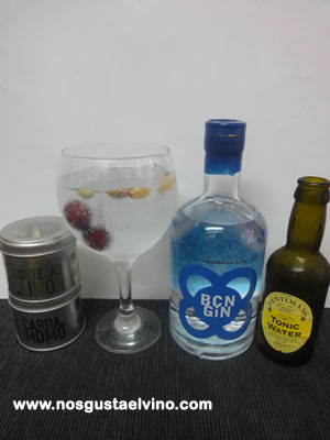 bcn gin perfect serve