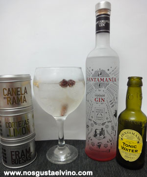santamania gin perfect serve