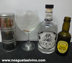 siderit gin perfect serve