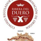 Vendimia en la Ribera del Duero