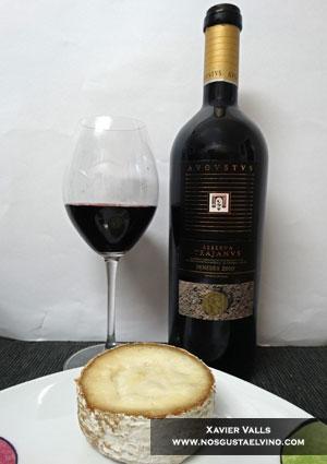 avgvstvs trajanvs reserva 2010 con queso cremoso de oveja