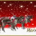 Feliz Navidad 2016 Nos Gusta el VIno