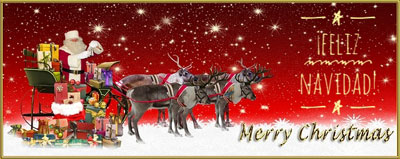 Feliz Navidad NgV 2016