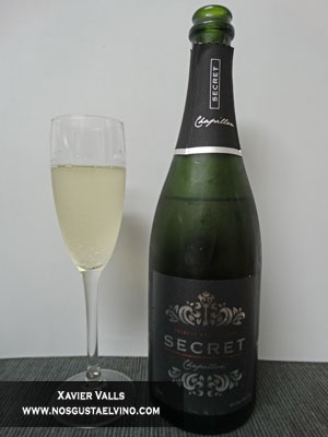 cava chapillon secret brut nature reserva de Christophe Chapillon