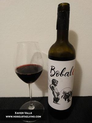 bobale vino terracotta wines